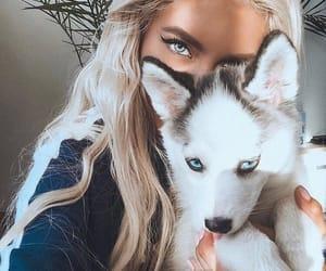 eyes, girl, and blonde image