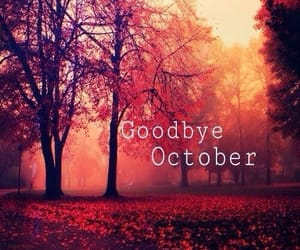 october, november, and goodbye image