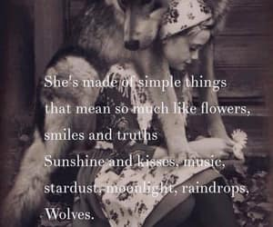 flowers, kisses, and moonlight image