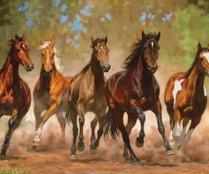 horses and cute image