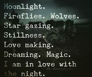 dreaming, star gazing, and firelight image