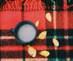 aesthetic, coffee, and fall image