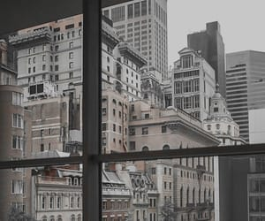 city, window, and building image
