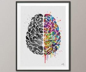 brain and medicine image