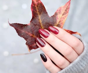 nails, autumn, and leaves image