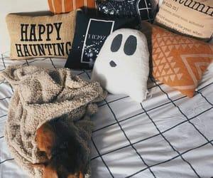 animals, autumn, and decor image