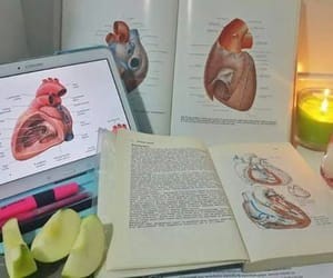 book, school, and student image