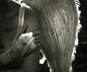 angel, article, and friendship image