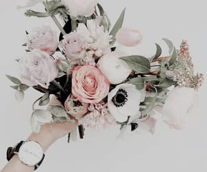 aesthetic, flores, and flowers image