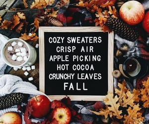 Apple Pie, fall, and sweater weather image