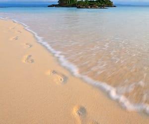 beach, nature, and belleza image