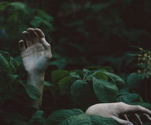 green, hands, and dark image