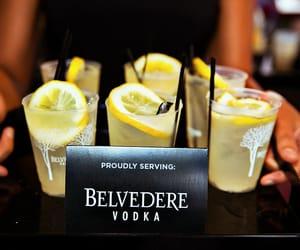 vodka, drink, and lemon image