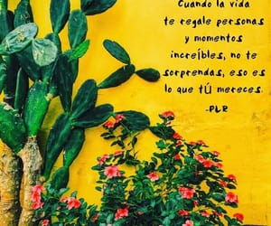 amarillo, frase, and quote image