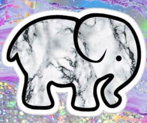 elephant, glitter, and marble image