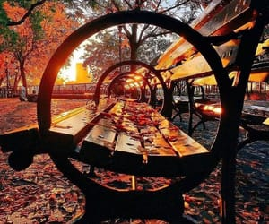 autumn, park, and chair image