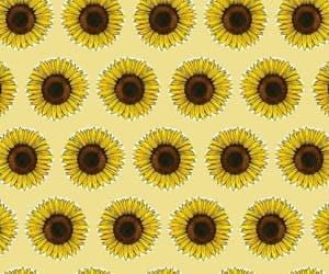 sunflower, patron, and pattern image