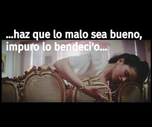 flamenco, Lyrics, and el mal querer image