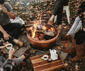 autumn, friends, and fall image