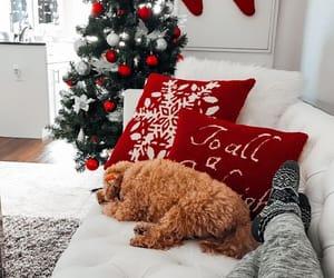 christmas, winter, and dog image