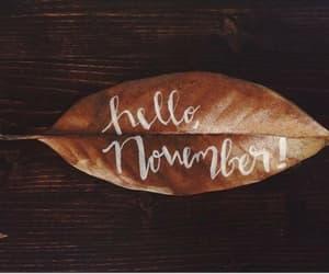 hello, leaves, and november image