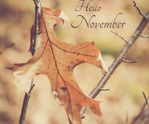 november and month image
