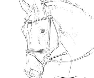 animal, drawing, and drawings image
