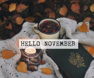 fall, hello, and november image
