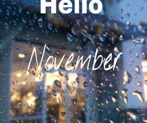 november, fall, and rain image