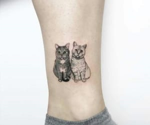 cat, tattoo, and art image
