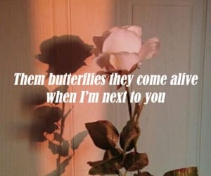 butterflies, couples, and feeling image
