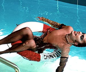gif, iconic, and rocky horror picture show image