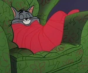 cartoon, sleep, and Tom image