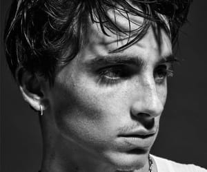 timothee chalamet, handsome, and call me by your name image