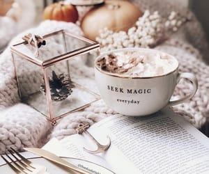 autumn, inspo, and book image