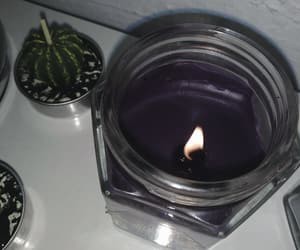 aesthetic, cactus, and candle image