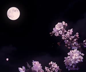 flowers, gif, and moon image
