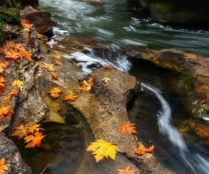 autumn, water, and landscape image