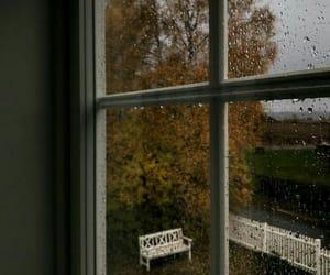 autumn, rain, and window image