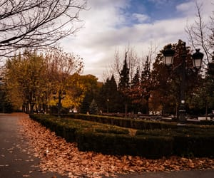 autumn, brasov, and fall image
