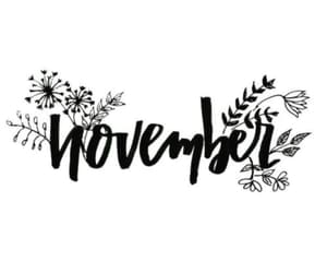 november, autumn, and quotes image
