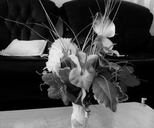 black and white, flower, and living room image