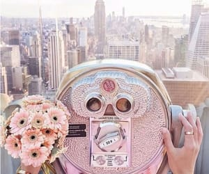pink, city, and flowers image