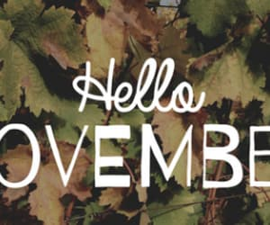 article, plan with me, and november image