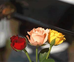 alone, flowers, and hate image