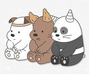 wallpaper, bear, and panda image