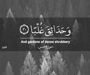 arabic, arabic quotes, and قراّن image