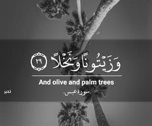 islam, اسﻻم, and قرآن image
