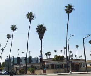 beach, love, and los angeles image