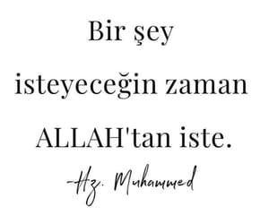 hz muhammed, türkçe sözler, and ilim ağacı image